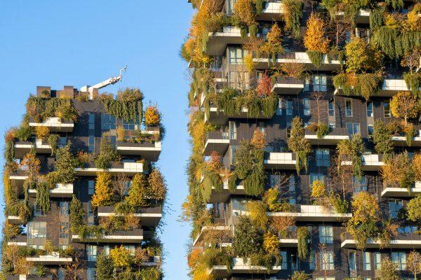 Turm E und Turm D, während der Herbstmonate